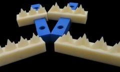 研究人员通过3D打印牙齿研究早期哺乳动物的进化