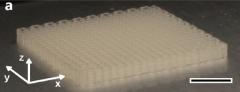3D打印植物纤维素可片刻变木材?