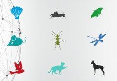 """<b>师从动物学习""""超能力"""" 3D打印成仿生科技新星</b>"""