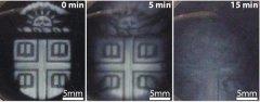 """布朗大学工程师开发出""""按需降解""""的3D打印生物材料"""