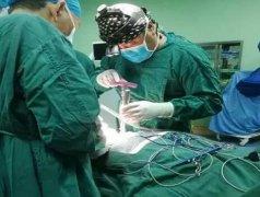 ca88会员登录|ca88亚洲城官网会员登录,欢迎光临_郑州市骨科医院成功开展河南省首例ca88会员登录人工椎体植入术