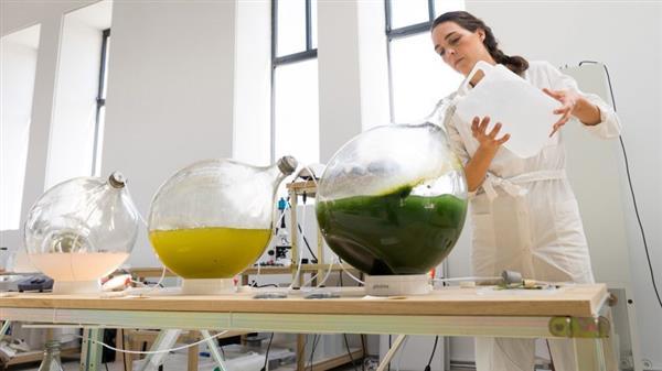 荷兰设计师利用藻类植物作为原材料,制造环保3D打印耗材