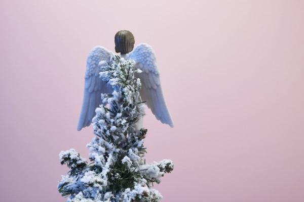 ca88会员登录,ca88亚洲城官网会员登录,ca88亚洲城,ca88亚洲城官网_您可以用ca88会员登录的碧昂斯,希拉里或塞雷纳来装饰圣诞树