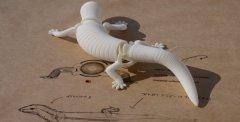 3D打印的仿生机器人,可以像真实动物一样移动爬行