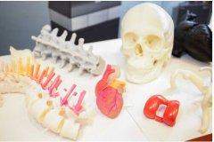 中国生物3D打印领域的技术专家介绍