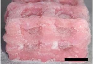 干冰有助于帝国研究人员为人造器官3D打印超柔软的生物结构