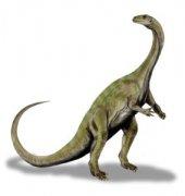<b>国外一博士生通过3D扫描和3D打印解锁恐龙化石的秘密</b>