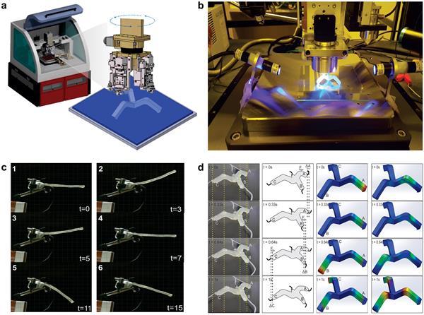 "3D打印柔性机器人的未来取决于3DP,软光刻和""新创新"""