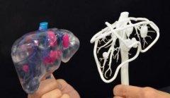 """3D打印的心脏,会怦然""""心""""动吗?"""