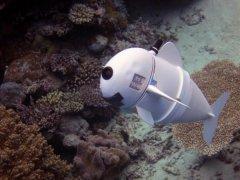 """<b>麻省理工开发3D打印软件机器人鱼""""SoFi""""观测水下世界</b>"""