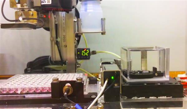 日本研究人员将人体细胞的生物3D打印贴片添加到损坏的隔膜上