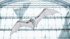 <b>较之活蝙蝠如何?3D打印翼展达7英尺的半自动仿生蝙蝠</b>