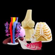 <b>3D Systems为3D打印解剖模型提供全新的点播服务</b>