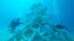 世界上最大的人工3D打印珊瑚礁安装在马尔代夫夏日岛