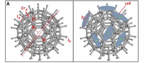 香港城市大学开发用于原位细胞再生的3D打印微型机器人