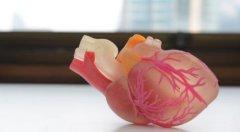 西门子制造3D打印心脏 方便医生研究测试