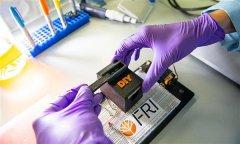 3D打印工具使用智能手机来检测携带疾病的蚊子Wolbachia