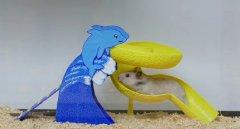 3D打印笔轻松为小仓鼠画一套滑滑梯,给小宠物填增了不少乐趣
