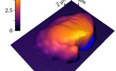 <b>将AFM与立体光刻技术相结合,精确测量3D打印聚合物材料特性</b>