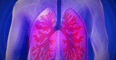 CollPlant和United Therapeutics签署了生物3D打印肺部的许可协议
