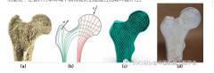采用类骨多孔结构对增材制造部件的内部填充结构进行优化