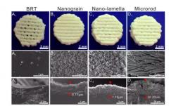 3D打印生物陶瓷支架表面微纳米结构调控骨-软骨一体化修复研究获