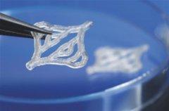Fraunhofer ILT开发具有亚微米分辨率的DLP多光子聚合3D打印机