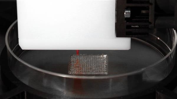 科学家们使用胶原蛋白和牛骨来推进生物3D打印研究