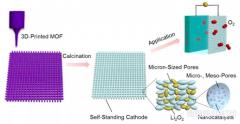 3D打印MOF衍生的分级多孔碳框架:提高锂氧电池能量密度的新方法