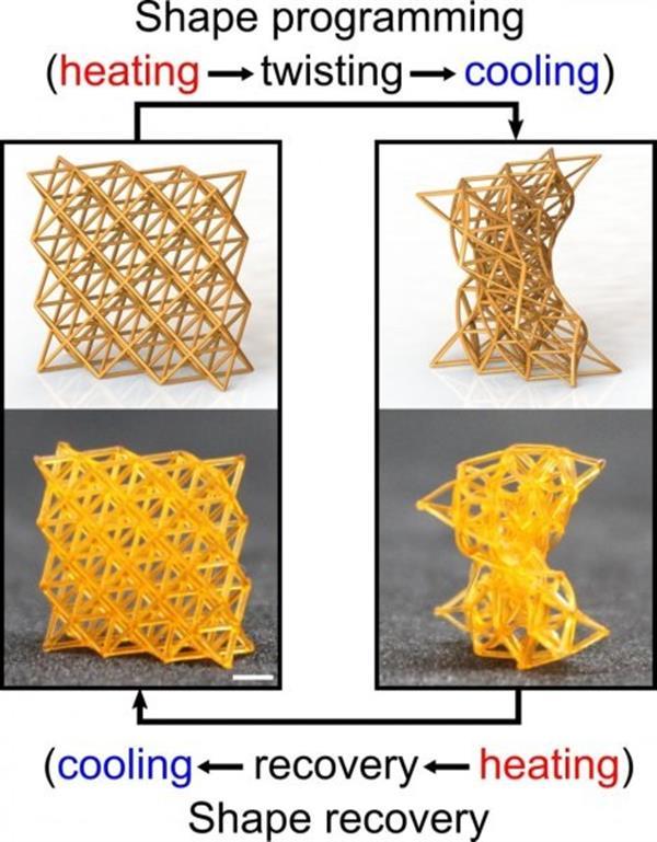 4D打印智能超材料可以像木头一样坚硬也能像海绵一样柔软