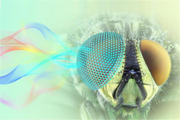 3D打印的半球形超材料可以在选定的频率下吸收微波
