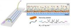 <b>耦合水域的桥梁 科学家3D打印全液体'实验室芯片'</b>