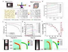 <b>中美合作团队《Science》子刊: 3D打印功能梯度材料取得重要进展</b>